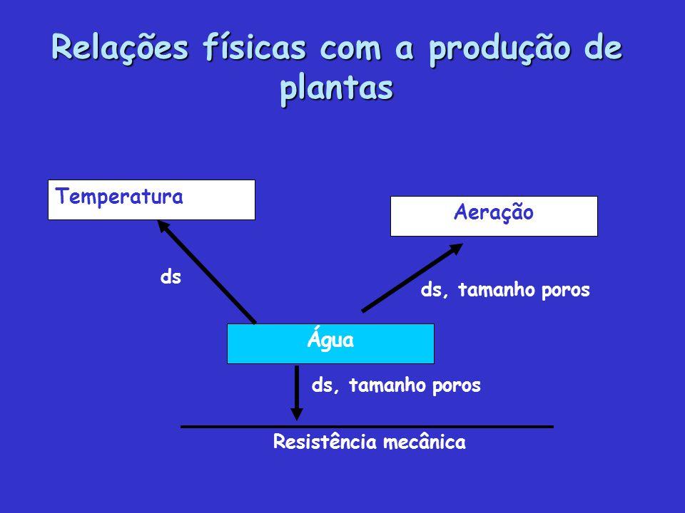 Relações físicas com a produção de plantas