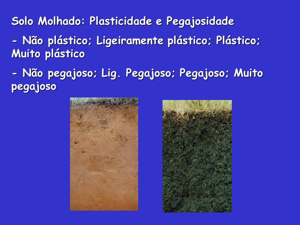 Solo Molhado: Plasticidade e Pegajosidade