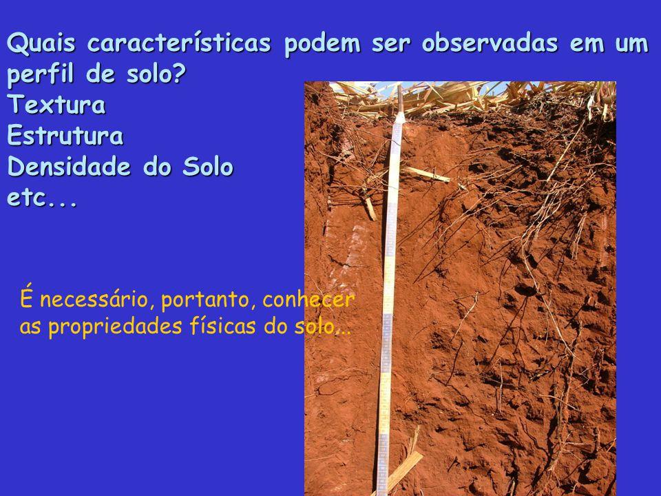 Quais características podem ser observadas em um perfil de solo