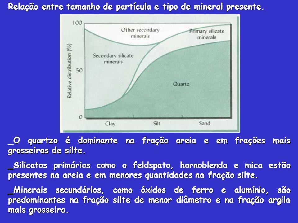 Relação entre tamanho de partícula e tipo de mineral presente.