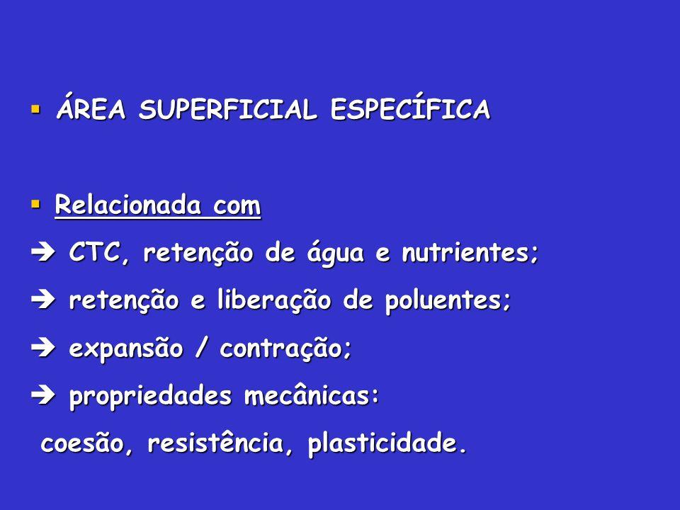 ÁREA SUPERFICIAL ESPECÍFICA