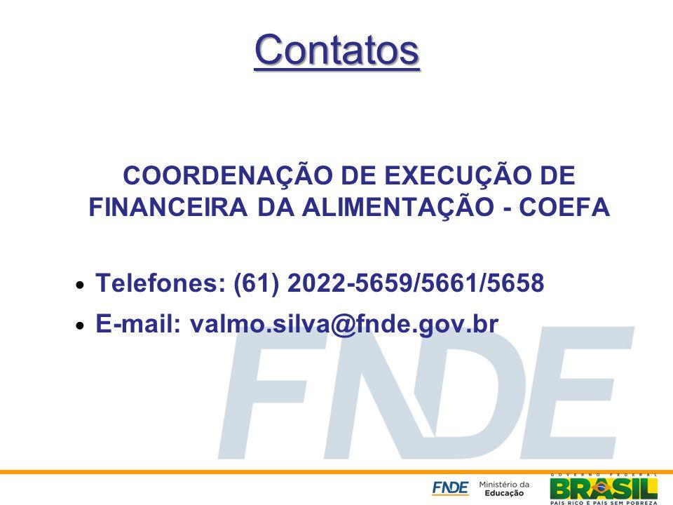 COORDENAÇÃO DE EXECUÇÃO DE FINANCEIRA DA ALIMENTAÇÃO - COEFA