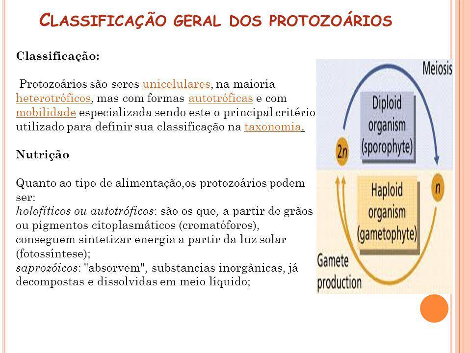Classificação geral dos protozoários