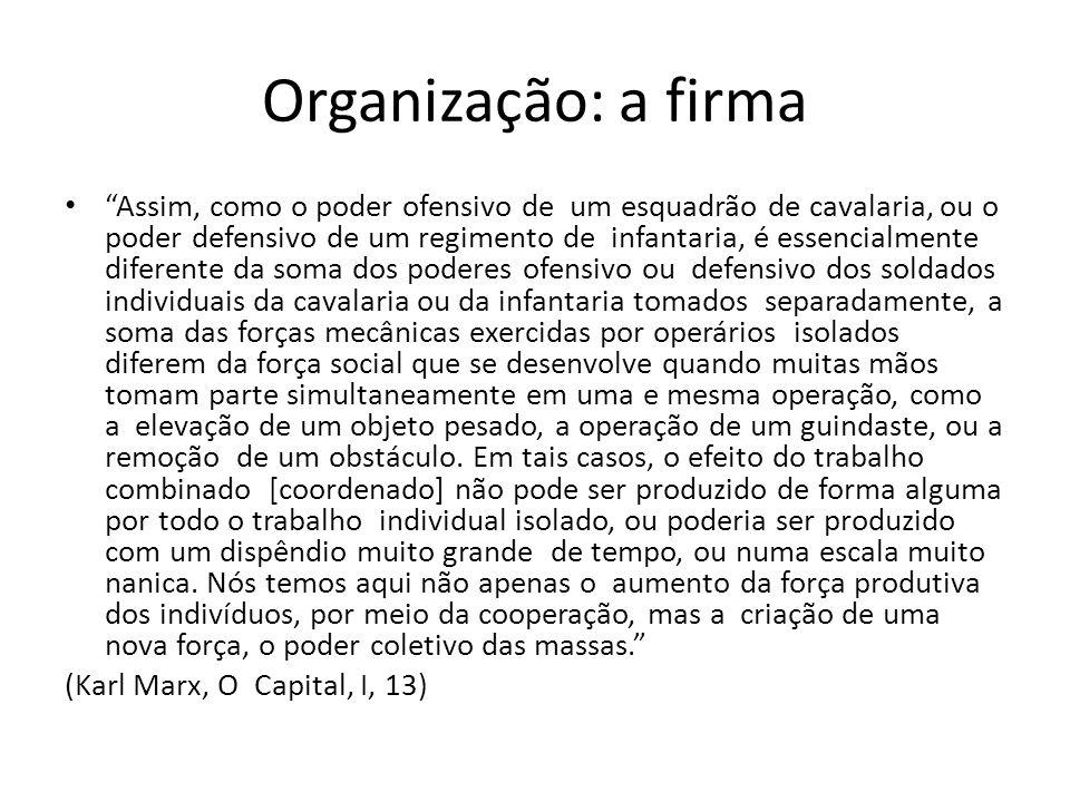 Organização: a firma