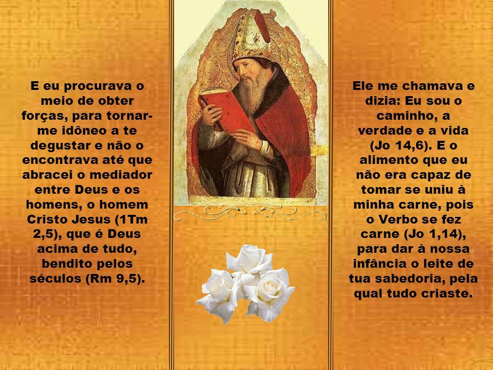 E eu procurava o meio de obter forças, para tornar-me idôneo a te degustar e não o encontrava até que abracei o mediador entre Deus e os homens, o homem Cristo Jesus (1Tm 2,5), que é Deus acima de tudo, bendito pelos séculos (Rm 9,5).