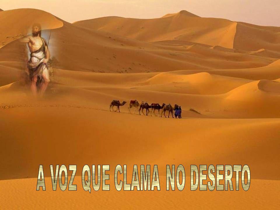 A VOZ QUE CLAMA NO DESERTO