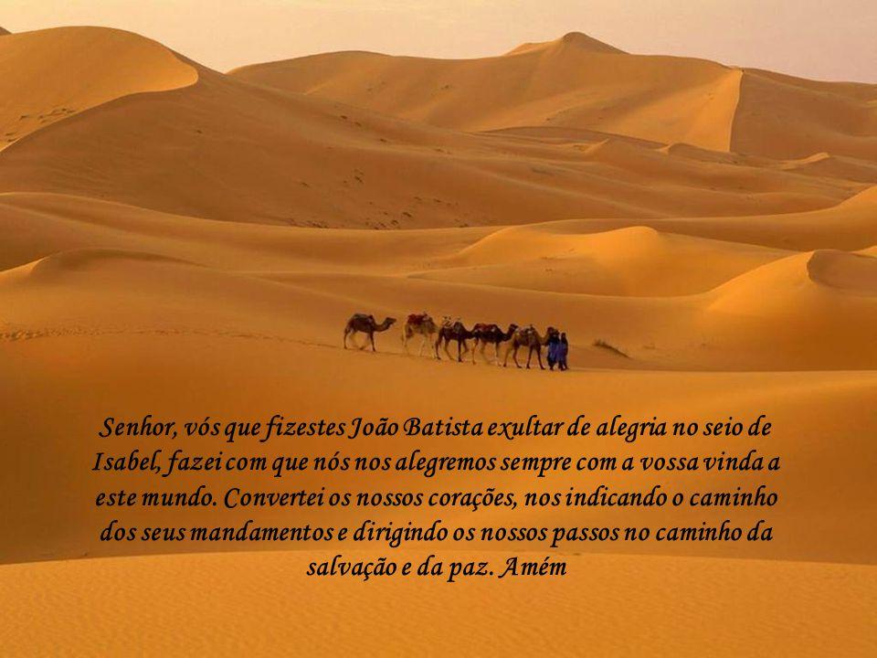 Senhor, vós que fizestes João Batista exultar de alegria no seio de Isabel, fazei com que nós nos alegremos sempre com a vossa vinda a este mundo.