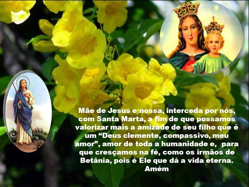 Mãe de Jesus e nossa, interceda por nós, com Santa Marta, a fim de que possamos valorizar mais a amizade de seu filho que é um Deus clemente, compassivo, meu amor , amor de toda a humanidade e, para que cresçamos na fé, como os irmãos de Betânia, pois é Ele que dá a vida eterna.