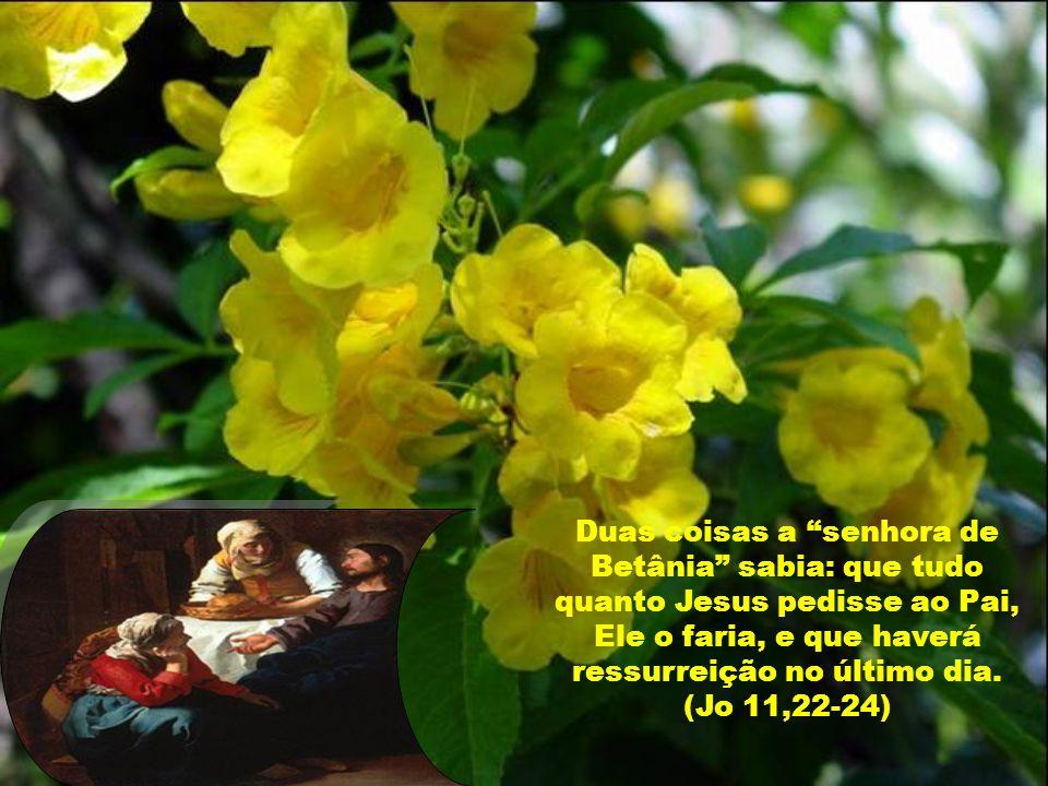 Duas coisas a senhora de Betânia sabia: que tudo quanto Jesus pedisse ao Pai, Ele o faria, e que haverá ressurreição no último dia.