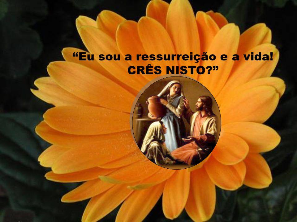 Eu sou a ressurreição e a vida! CRÊS NISTO