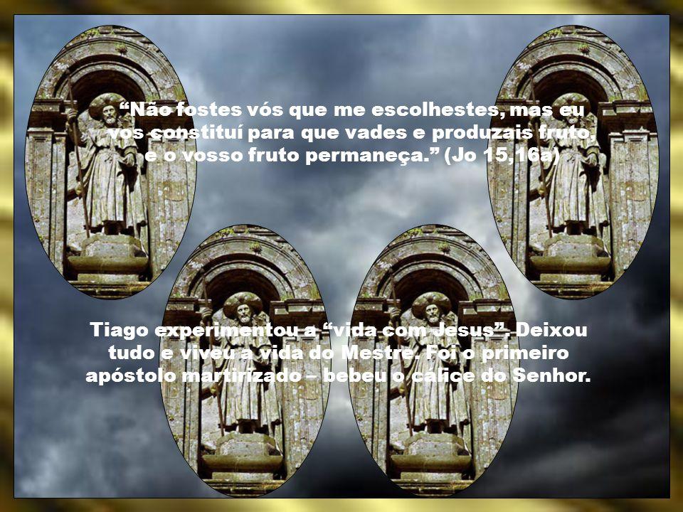 Não fostes vós que me escolhestes, mas eu vos constituí para que vades e produzais fruto, e o vosso fruto permaneça. (Jo 15,16a)
