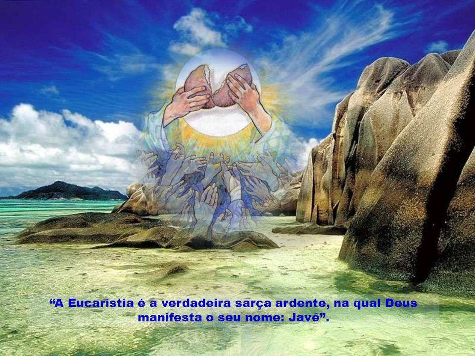A Eucaristia é a verdadeira sarça ardente, na qual Deus manifesta o seu nome: Javé .