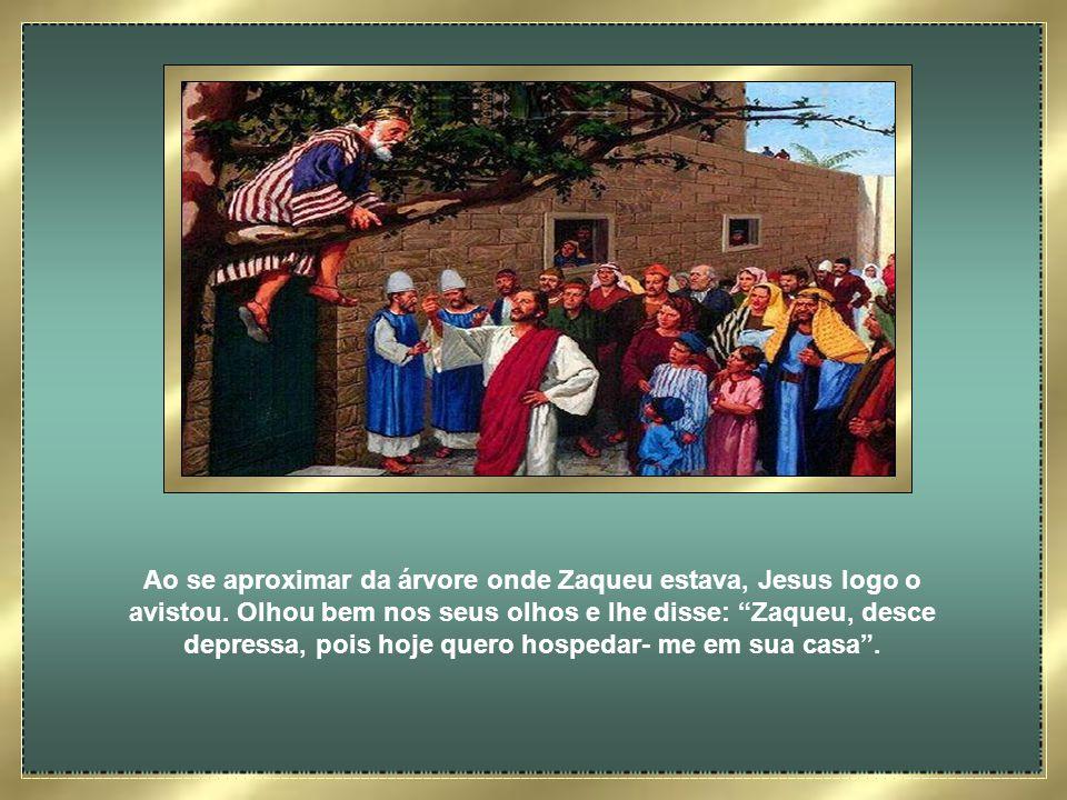 Ao se aproximar da árvore onde Zaqueu estava, Jesus logo o avistou