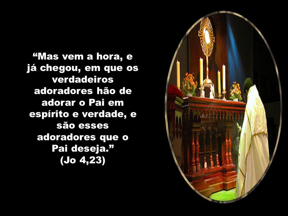 Mas vem a hora, e já chegou, em que os verdadeiros adoradores hão de adorar o Pai em espírito e verdade, e são esses adoradores que o Pai deseja. (Jo 4,23)
