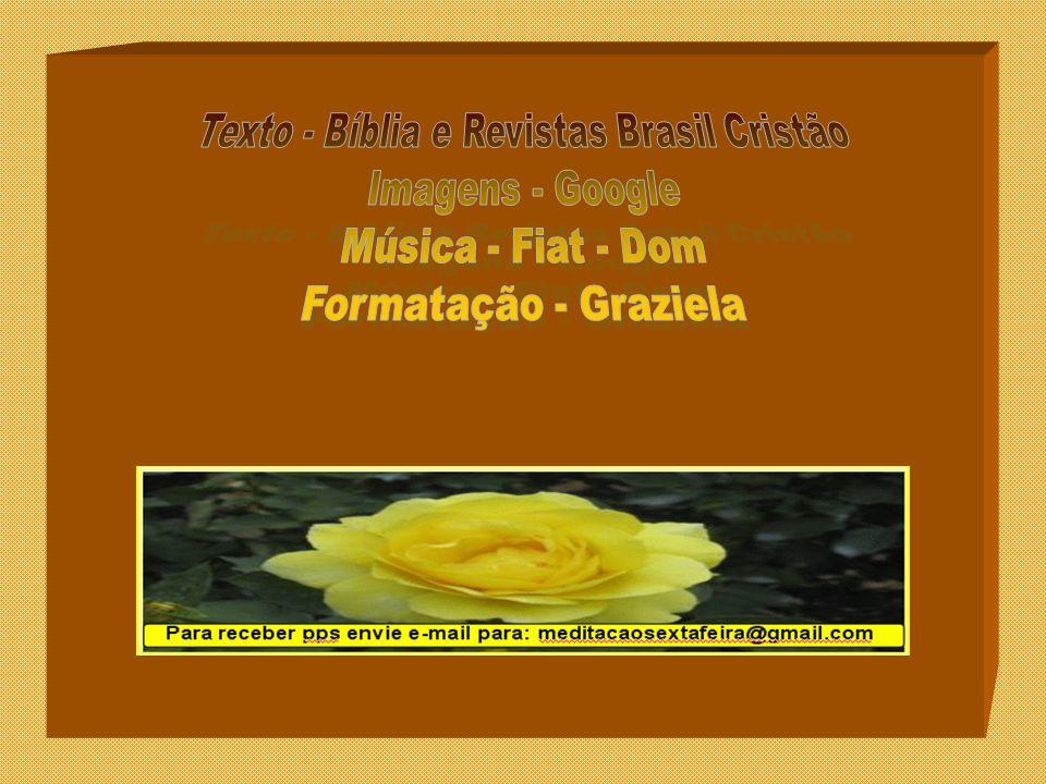 Texto - Bíblia e Revistas Brasil Cristão