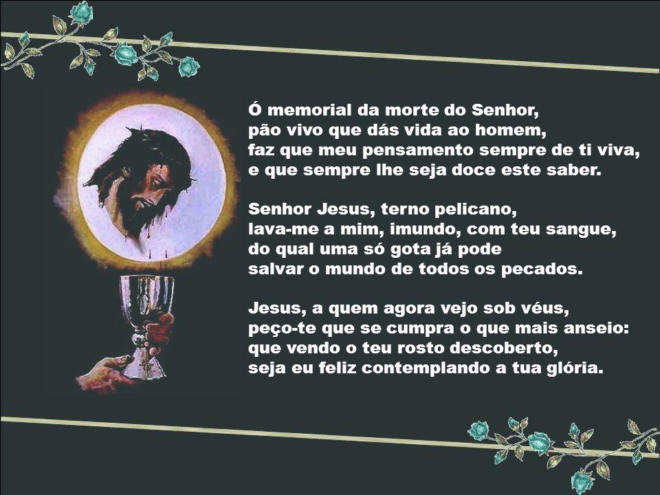 Ó memorial da morte do Senhor, pão vivo que dás vida ao homem, faz que meu pensamento sempre de ti viva, e que sempre lhe seja doce este saber.