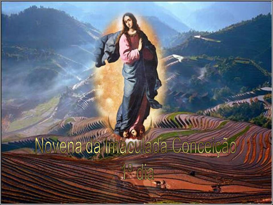 Novena da Imaculada Conceição