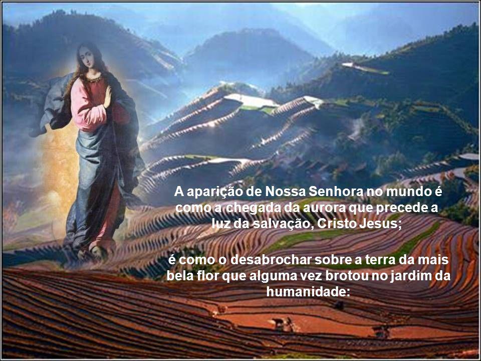 A aparição de Nossa Senhora no mundo é como a chegada da aurora que precede a luz da salvação, Cristo Jesus;
