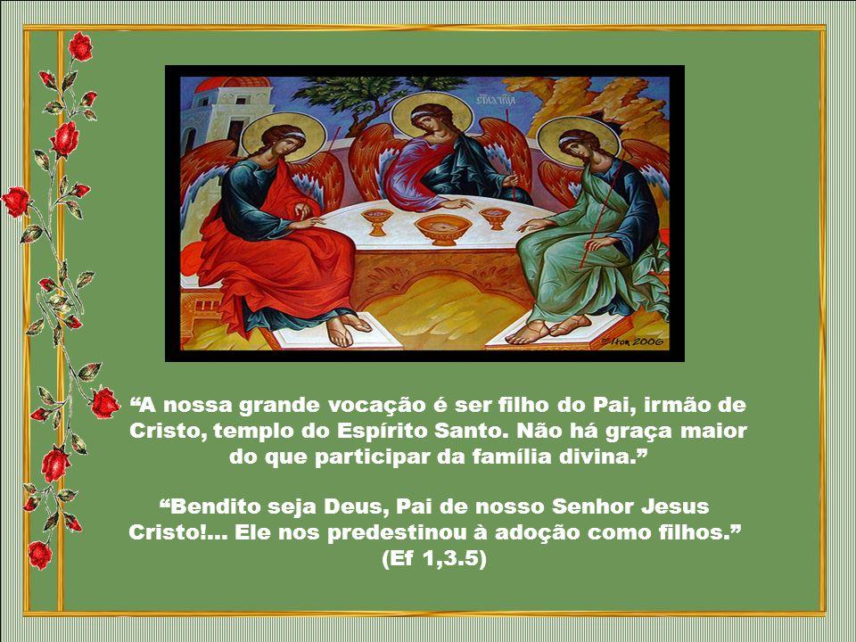 A nossa grande vocação é ser filho do Pai, irmão de Cristo, templo do Espírito Santo. Não há graça maior do que participar da família divina.