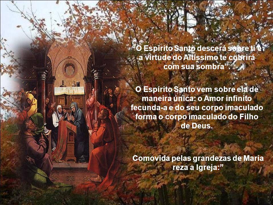 Comovida pelas grandezas de Maria reza a Igreja: