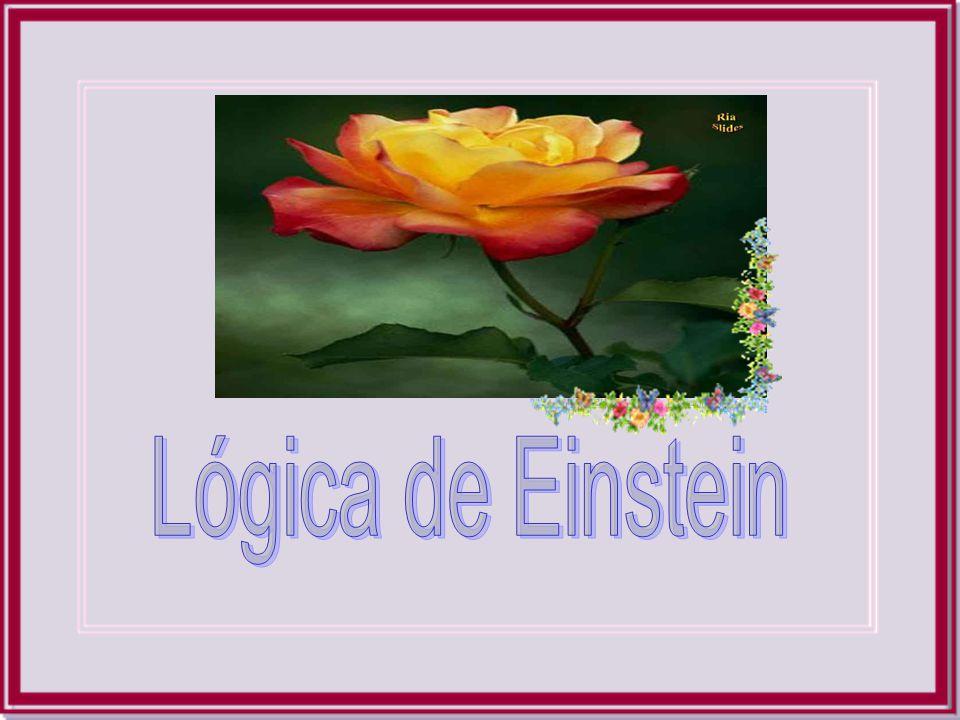 Lógica de Einstein