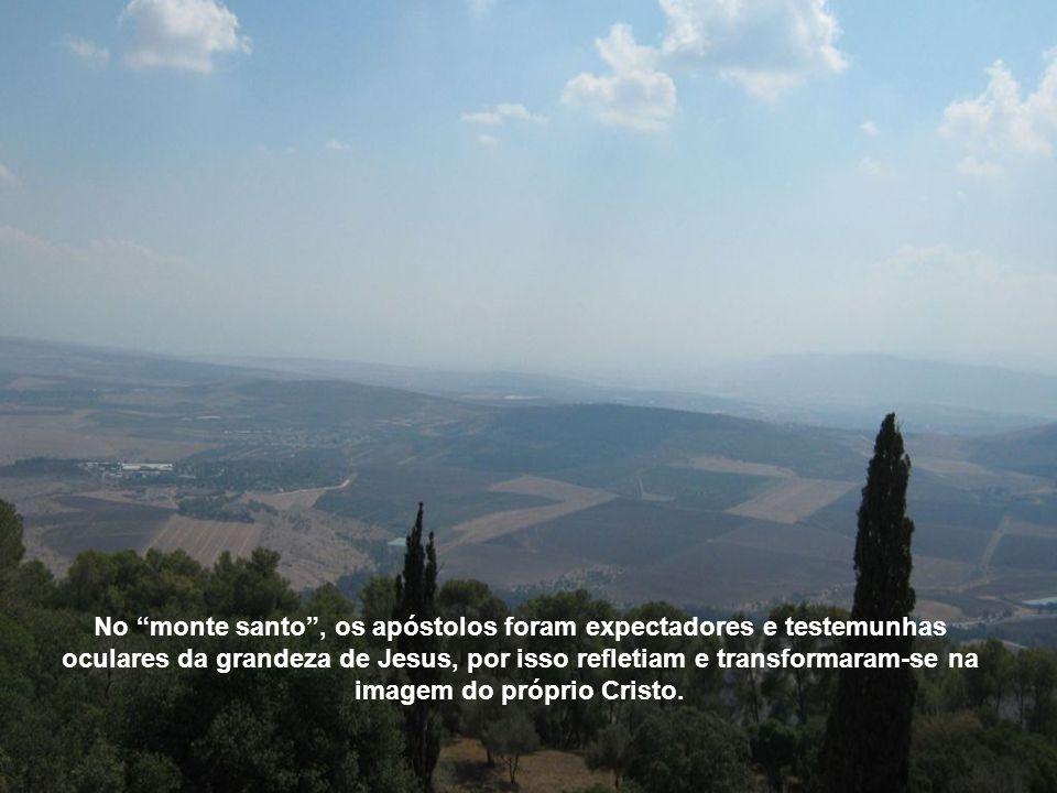 No monte santo , os apóstolos foram expectadores e testemunhas oculares da grandeza de Jesus, por isso refletiam e transformaram-se na imagem do próprio Cristo.