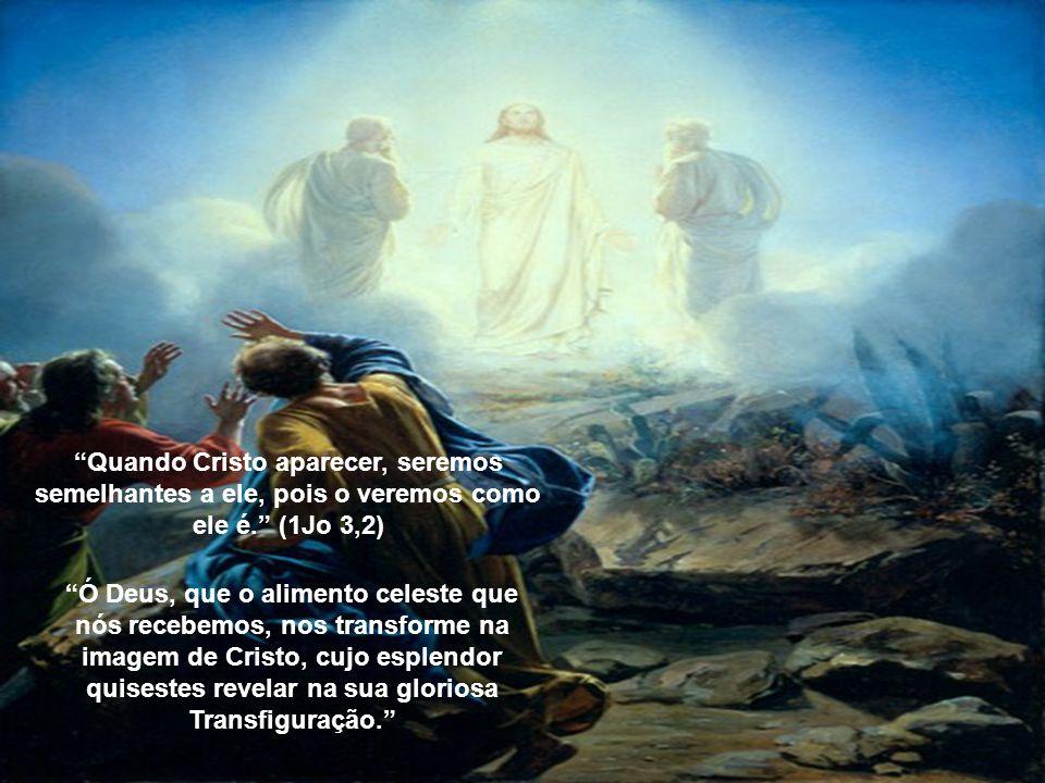 Quando Cristo aparecer, seremos semelhantes a ele, pois o veremos como ele é. (1Jo 3,2)