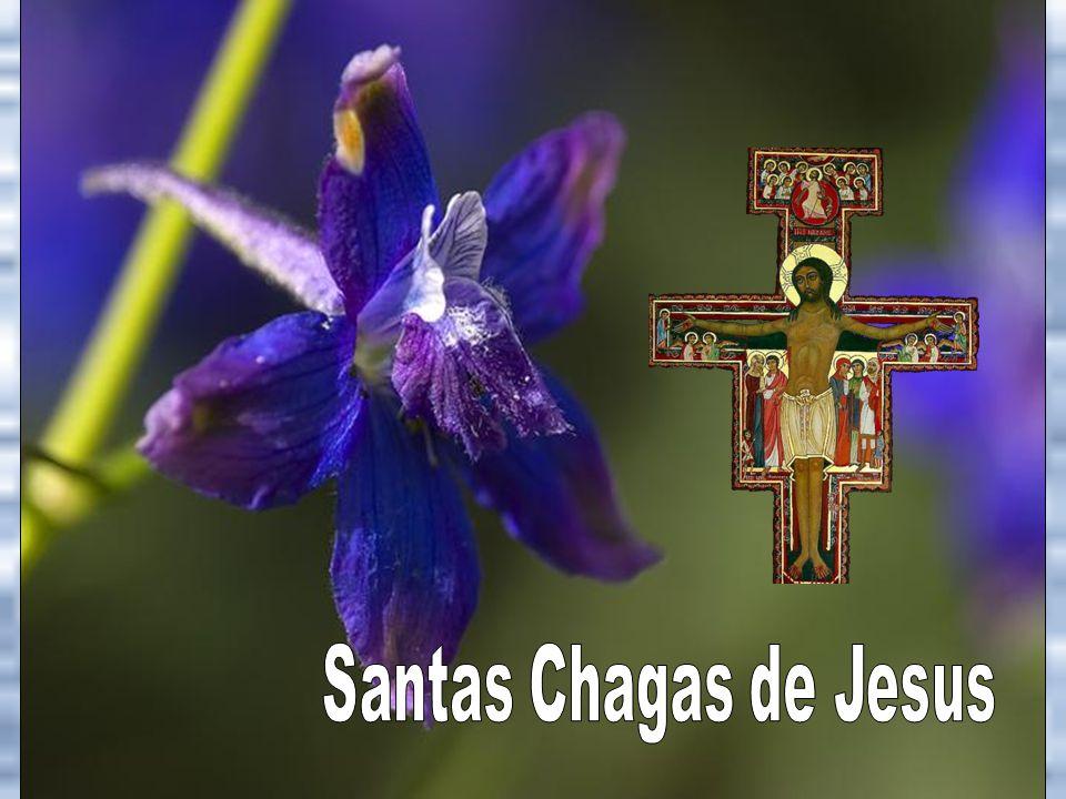 Santas Chagas de Jesus