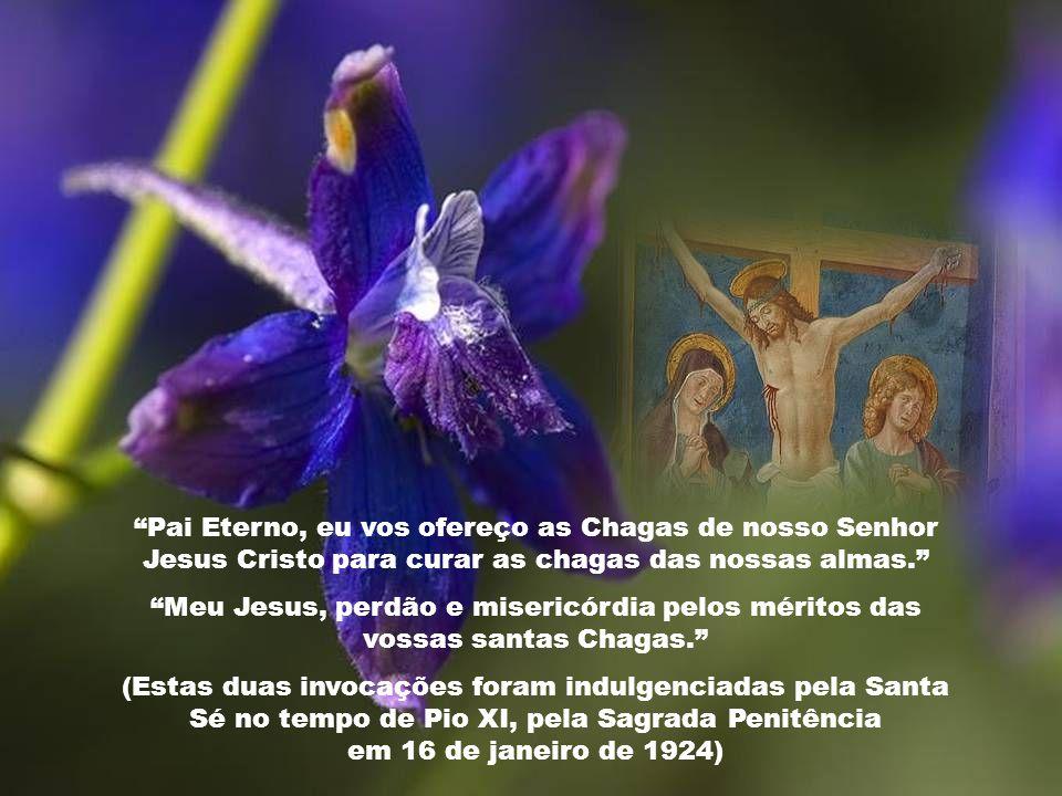 Pai Eterno, eu vos ofereço as Chagas de nosso Senhor Jesus Cristo para curar as chagas das nossas almas.