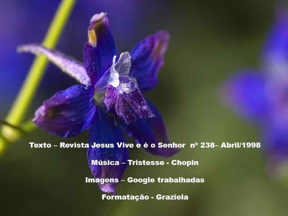 Texto – Revista Jesus Vive e é o Senhor nº 238– Abril/1998