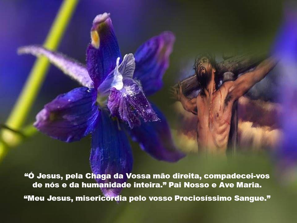 Meu Jesus, misericórdia pelo vosso Preciosíssimo Sangue.