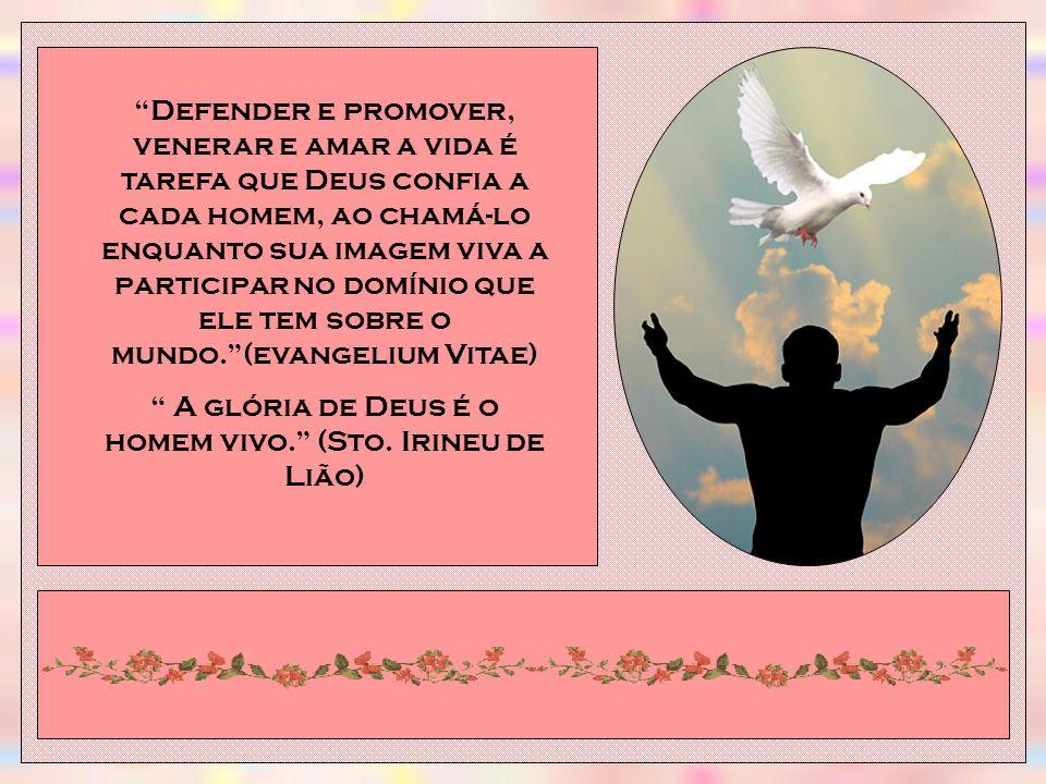 A glória de Deus é o homem vivo. (Sto. Irineu de Lião)