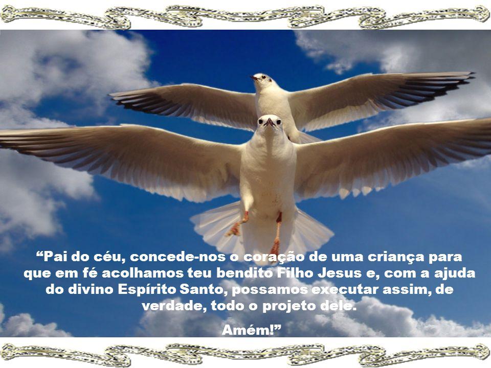 Pai do céu, concede-nos o coração de uma criança para que em fé acolhamos teu bendito Filho Jesus e, com a ajuda do divino Espírito Santo, possamos executar assim, de verdade, todo o projeto dele.