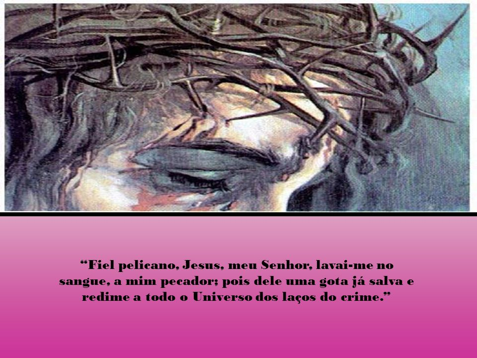 Fiel pelicano, Jesus, meu Senhor, lavai-me no sangue, a mim pecador; pois dele uma gota já salva e redime a todo o Universo dos laços do crime.