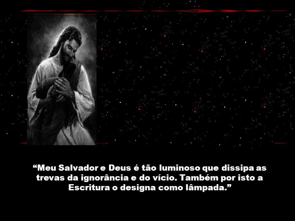 Meu Salvador e Deus é tão luminoso que dissipa as trevas da ignorância e do vício.