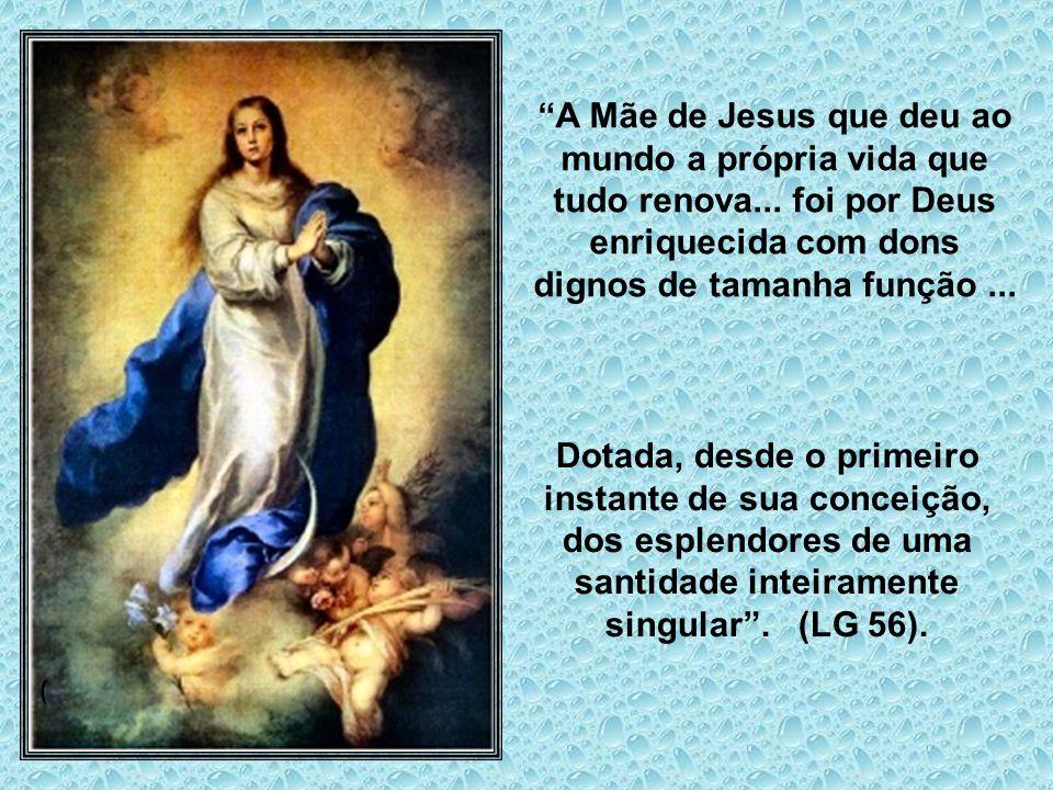 A Mãe de Jesus que deu ao mundo a própria vida que tudo renova