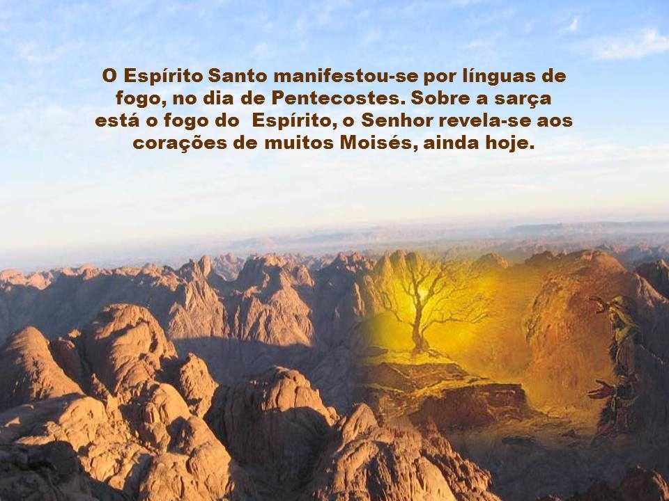 O Espírito Santo manifestou-se por línguas de fogo, no dia de Pentecostes.