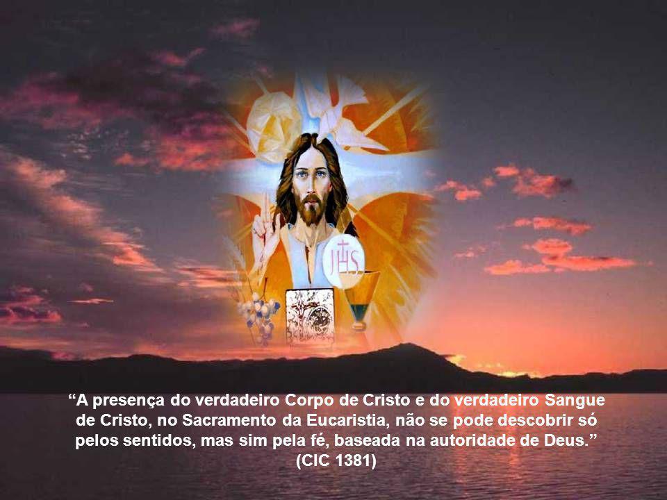 A presença do verdadeiro Corpo de Cristo e do verdadeiro Sangue de Cristo, no Sacramento da Eucaristia, não se pode descobrir só pelos sentidos, mas sim pela fé, baseada na autoridade de Deus. (CIC 1381)