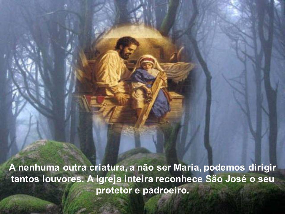 A nenhuma outra criatura, a não ser Maria, podemos dirigir tantos louvores.