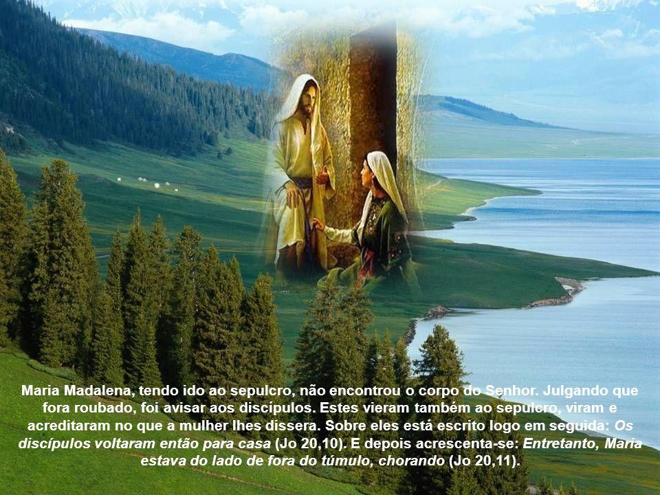 Maria Madalena, tendo ido ao sepulcro, não encontrou o corpo do Senhor