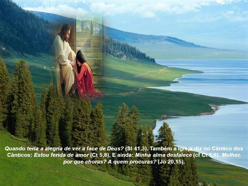 Quando teria a alegria de ver a face de Deus. (Sl 41,3)