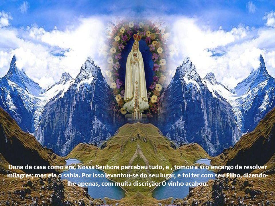 Dona de casa como era, Nossa Senhora percebeu tudo, e , tomou a si o encargo de resolver milagres; mas ela o sabia.