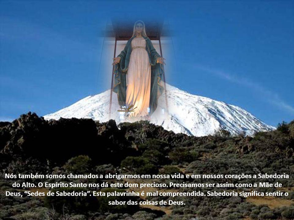 Nós também somos chamados a abrigarmos em nossa vida e em nossos corações a Sabedoria do Alto.