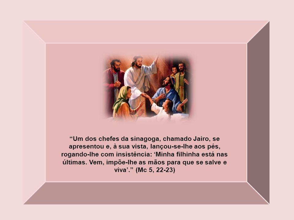Um dos chefes da sinagoga, chamado Jairo, se apresentou e, à sua vista, lançou-se-lhe aos pés, rogando-lhe com insistência: 'Minha filhinha está nas últimas.
