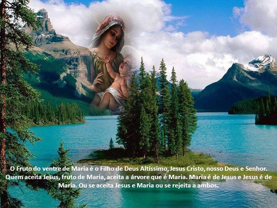 O Fruto do ventre de Maria é o Filho de Deus Altíssimo, Jesus Cristo, nosso Deus e Senhor.