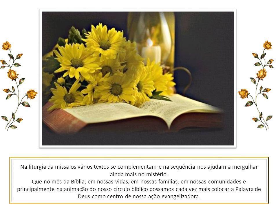 Na liturgia da missa os vários textos se complementam e na sequência nos ajudam a mergulhar ainda mais no mistério.