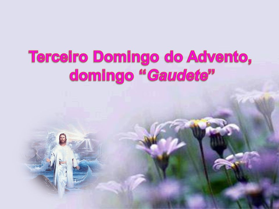 Terceiro Domingo do Advento,