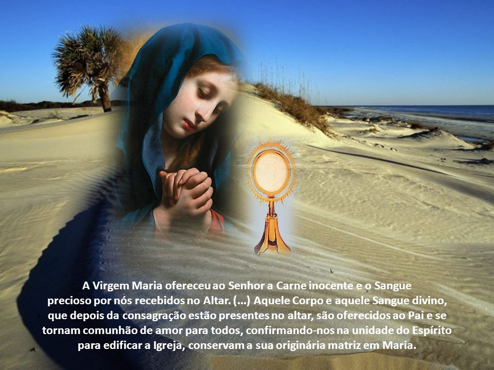 A Virgem Maria ofereceu ao Senhor a Carne inocente e o Sangue
