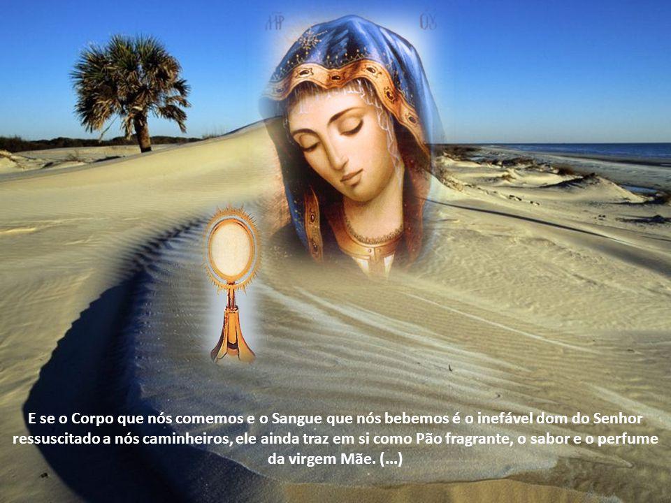 E se o Corpo que nós comemos e o Sangue que nós bebemos é o inefável dom do Senhor ressuscitado a nós caminheiros, ele ainda traz em si como Pão fragrante, o sabor e o perfume da virgem Mãe.