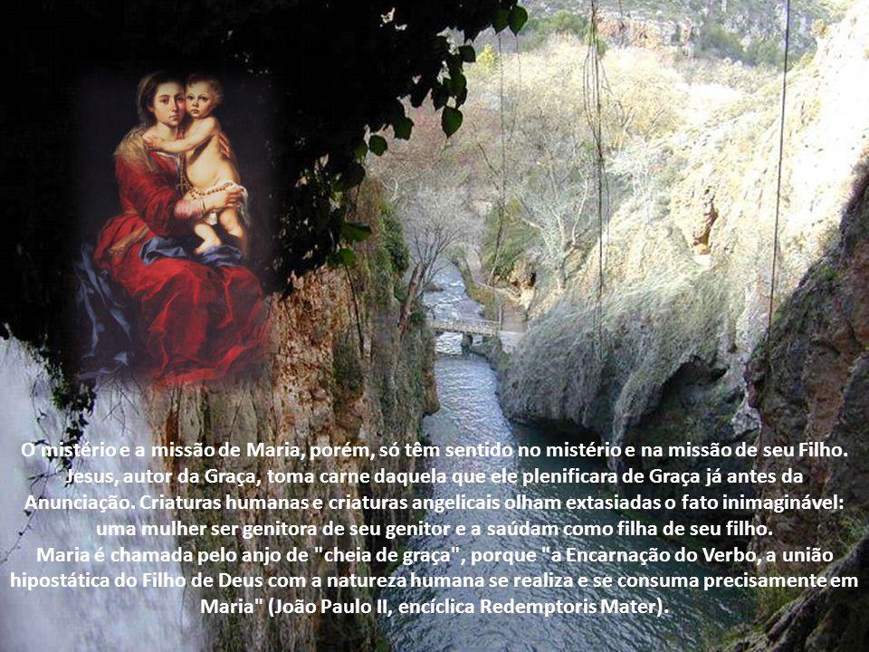 O mistério e a missão de Maria, porém, só têm sentido no mistério e na missão de seu Filho.